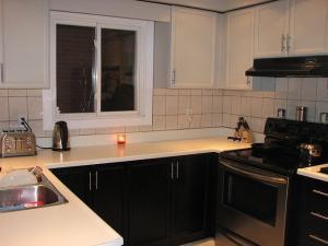 Harris Kitchen Cabinet Door painting